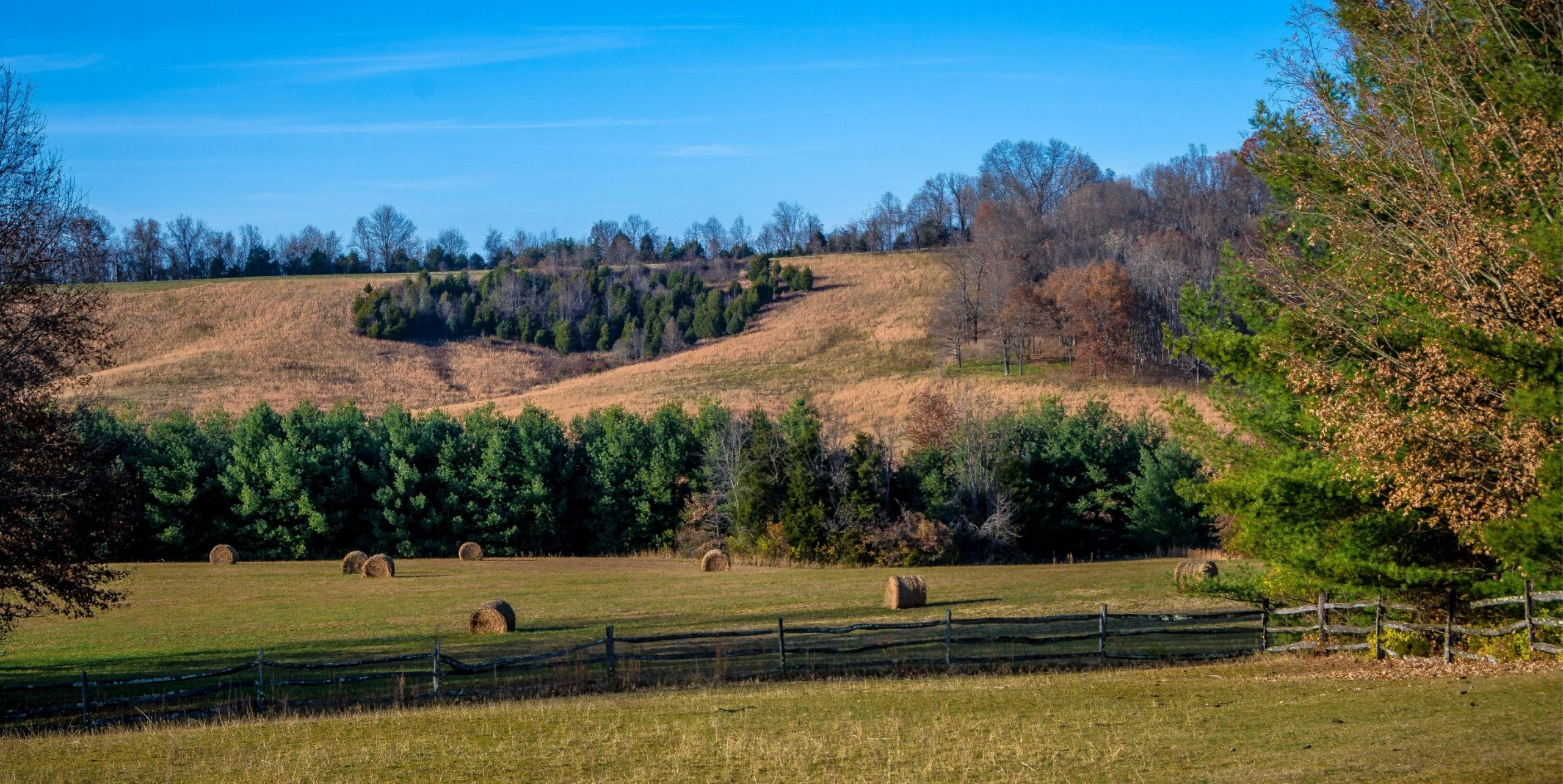 The Fields at Rocky Mount